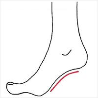 靴の土踏まず部分とアーチラインが合っているか確認