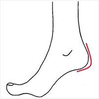 靴のかかとのカーブと、足のかかとのカーブがあっているか確認
